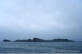 Island Belnahua