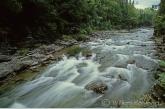 Snelstomend rivier