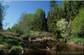 Lamprey-river, the Kauguri-canal